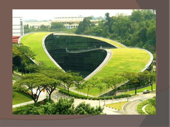 انسان طبیعت معماری